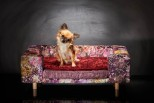 Pet Sofa La Couture Palace - Antique Rose
