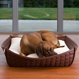 Bowl Luxury Leatherette Orthopaedic Dog Bed
