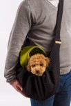 Luigi Dog Carrier