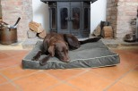 Hunt and Wilson Luxury Dog Cushion/Bed - Memory Foam Inner