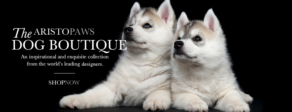 Dog Boutique