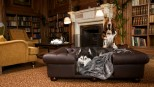Balmoral Chesterfield Designer Pet Sofa - Chocolate Brown Faux Leather