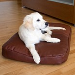 Sam Luxury Leather Dog Pillow
