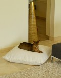 Divan Uno - Luxury Cat Cushion