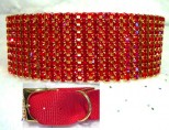 Ruby Radiance Dog Collar